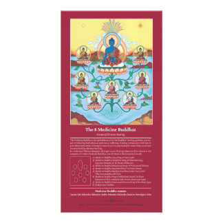 CARD The 8 Medicine Buddhas - with explanation