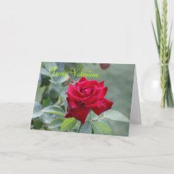 CARD To My Valentine card