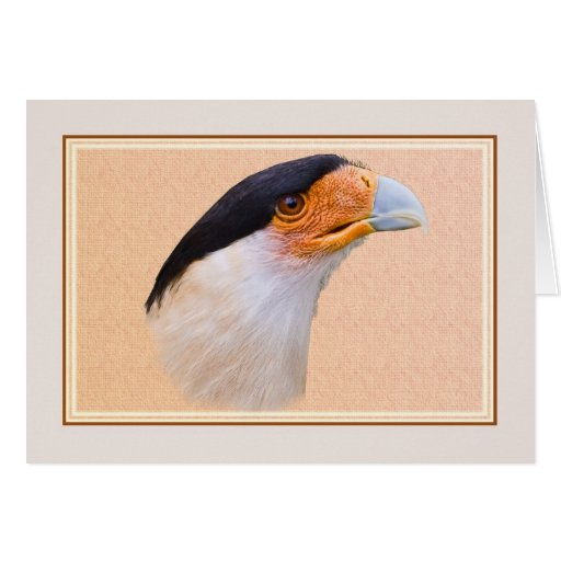 Card with Crested Caracara