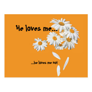 card with margrietjes He loves me, he loves me not