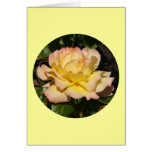 """Card, Yellow Pink Blush Rose"""" P-1"""