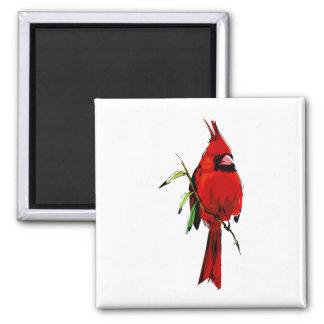 Cardan Cardinal Magnet