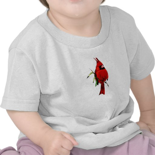 Cardan Cardinal Shirt