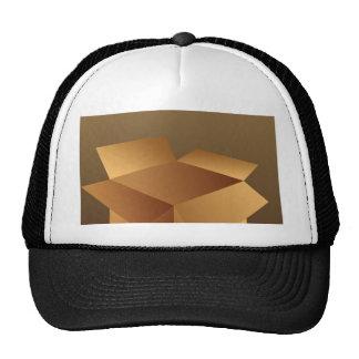 Cardboard Box Hat