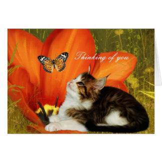 """Carde las flores blancas del gatito del gato """"que  tarjetas"""