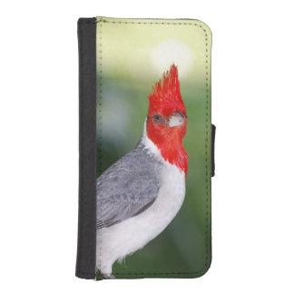 Cardenal con cresta rojo cartera para teléfono
