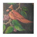 Cardenal de pintura de Ana Hayes de la teja