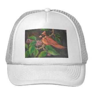 Cardenal de pintura de Ana Hayes del gorra