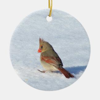 Cardenal de sexo femenino en el ornamento de adorno navideño redondo de cerámica