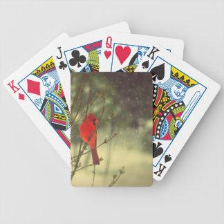 Cardenal de sexo masculino barajas de cartas