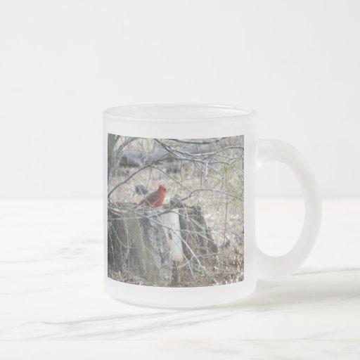 Cardenal de sexo masculino en tocón de árbol taza de café esmerilada