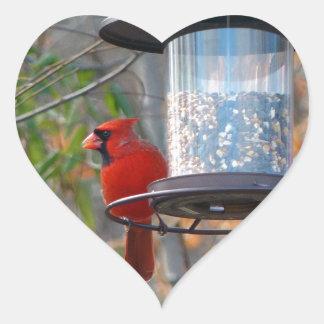 Cardenal de sexo masculino pegatina en forma de corazón