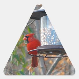 Cardenal de sexo masculino pegatina triangular