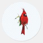 Cardenal del cardán pegatinas redondas