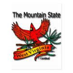 Cardenal del estado de la montaña de Virginia Occi Tarjeta Postal