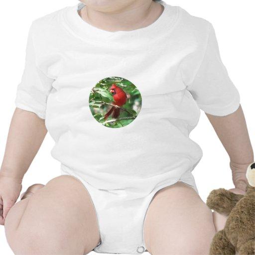 Cardenal en acebo traje de bebé