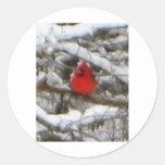cardenal en invierno pegatina redonda