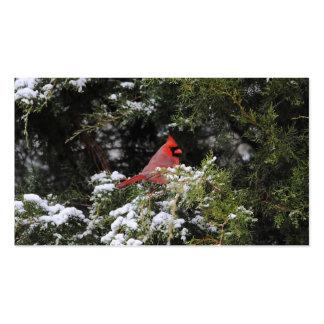 Cardenal en la nieve 1 tarjetas de visita