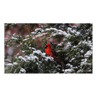 Cardenal en la nieve 2 tarjetas de visita