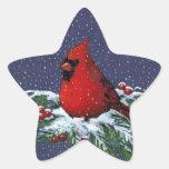 Cardenal en nieve: Pegatina de la estrella del nav