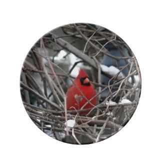 Cardenal en placa de la vid del invierno platos de cerámica