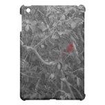Cardenal en un árbol iPad mini protector