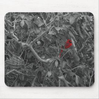 Cardenal en un árbol Mousepad Tapete De Ratones