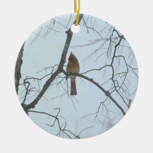 Cardenal en un árbol ornamentos de reyes