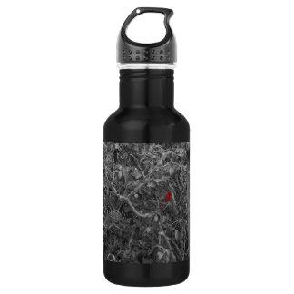 Cardenal en una botella de la libertad del árbol