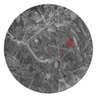 Cardenal en una placa del árbol plato de cena
