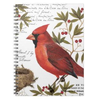 cardenal moderno del invierno del vintage cuaderno