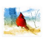 cardenal rojo de la nieve del navidad del vintage tarjeta postal