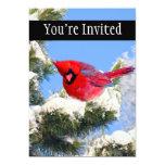Cardenal rojo dulce en árbol nevado invitación 12,7 x 17,8 cm