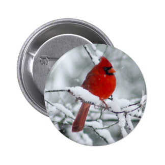 Cardenal rojo en el botón de la nieve pin redondo de 2 pulgadas