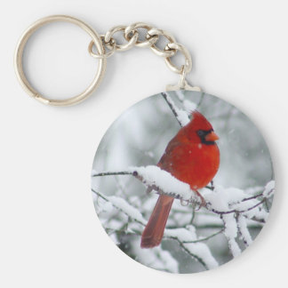 Cardenal rojo en el llavero de la nieve