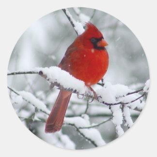 Cardenal rojo en el pegatina de la nieve