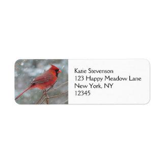 Cardenal rojo en invierno etiqueta de remitente