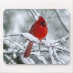 Cardenal rojo en la nieve Mousepad