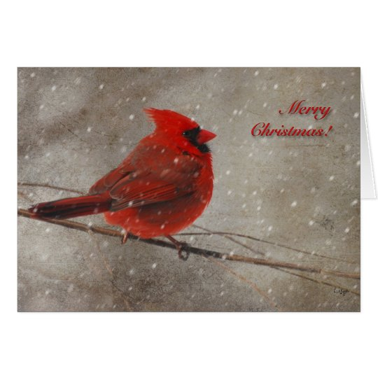 Cardenal rojo en la nieve - tarjeta de Navidad