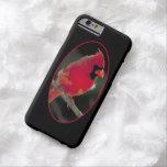 Cardenal rojo encaramado en una rama de árbol funda de iPhone 6 barely there