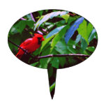 Cardenal rojo figura para tarta