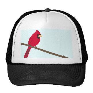 Cardenal rojo gorro