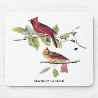 Cardenal septentrional de Audubon Alfombrillas De Ratón