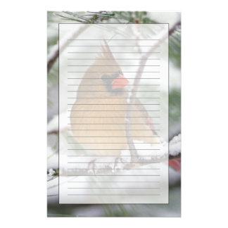 Cardenal septentrional de sexo femenino en árbol d  papeleria