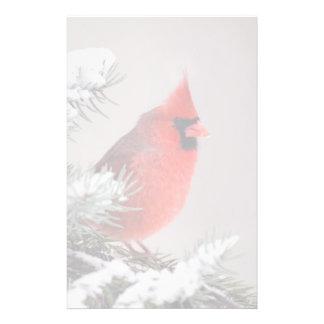 Cardenal septentrional encaramado en un árbol papelería