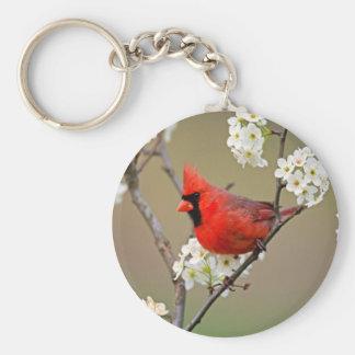 Cardenal septentrional llavero redondo tipo pin