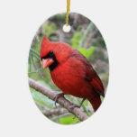 Cardenal septentrional -- Pájaro tradicional del n Adornos De Navidad