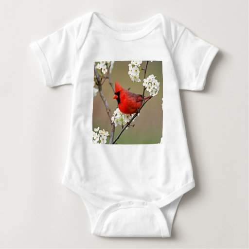 Cardenal septentrional t-shirts