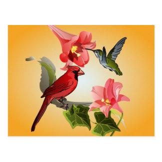 Cardenal y colibrí con los lirios y la hiedra postal