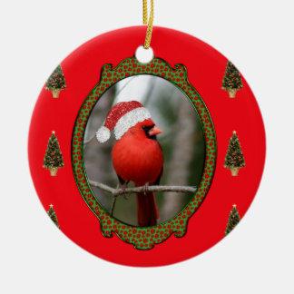 Cardenal y ornamento de los árboles ornatos